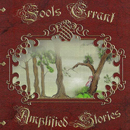 Fools Errant - Amplified Stories